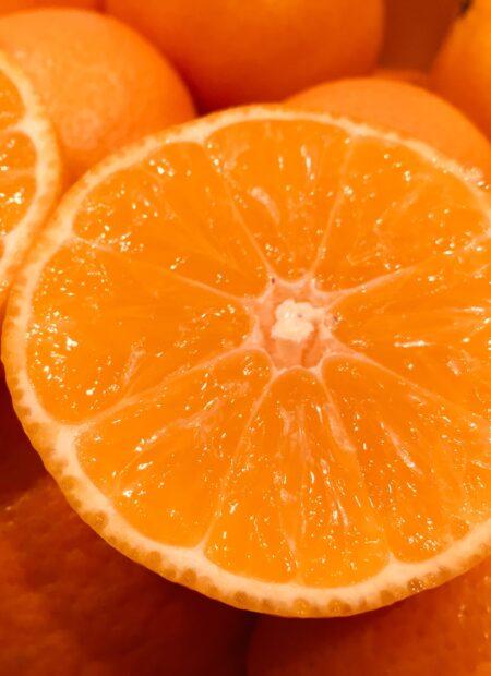 mandarin eller klementin
